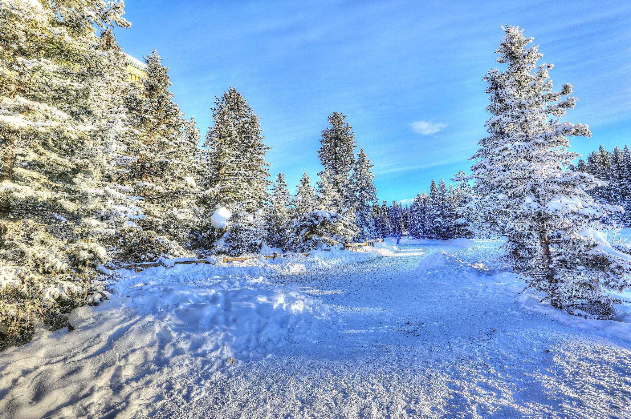 зима, деревья, дорога