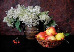 Фото бесплатно цветы, фрукты, натюрморт