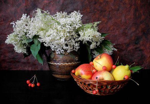 Заставки цветы, фрукты, натюрморт