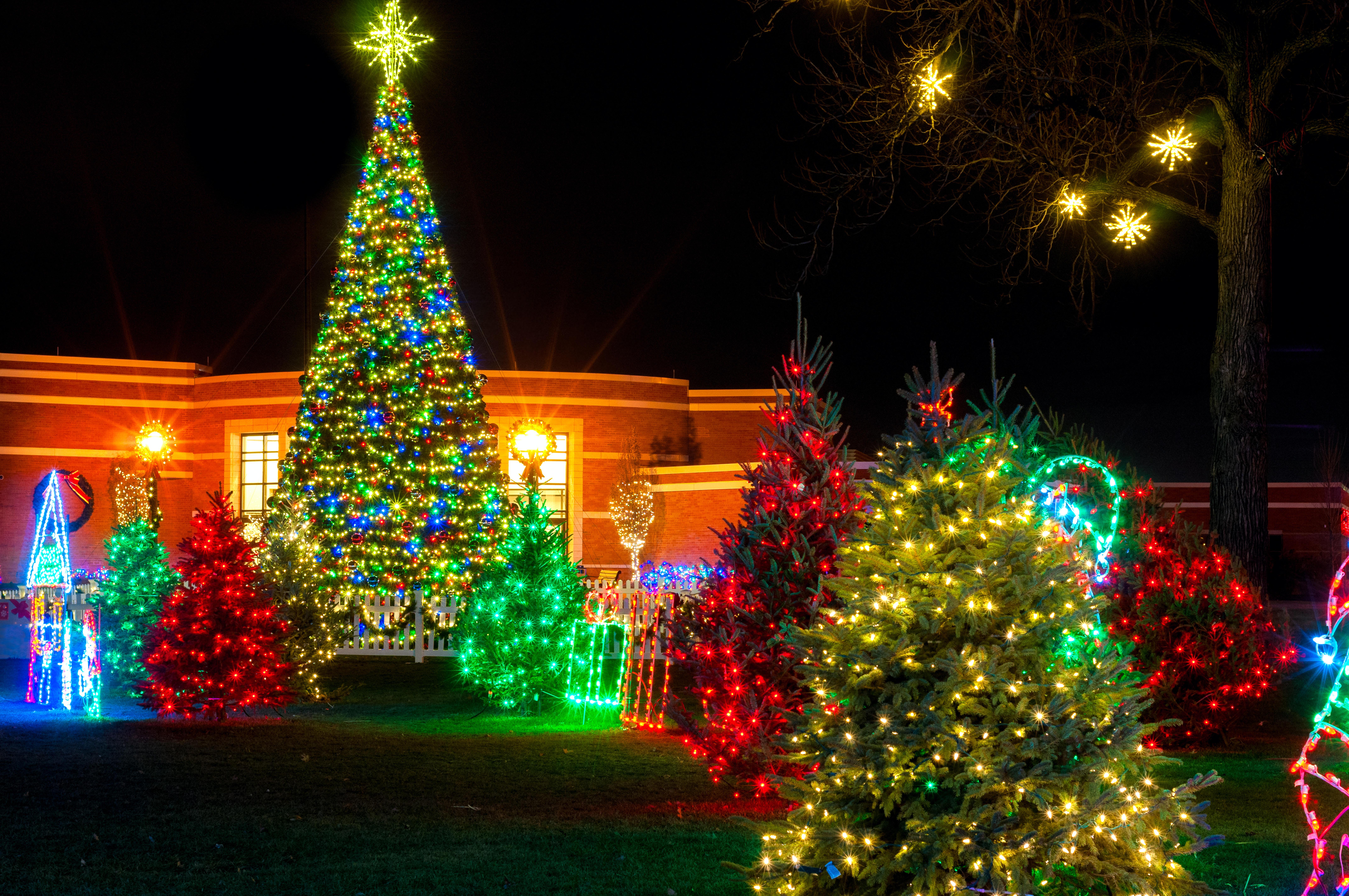 Рождество, фон, дизайн