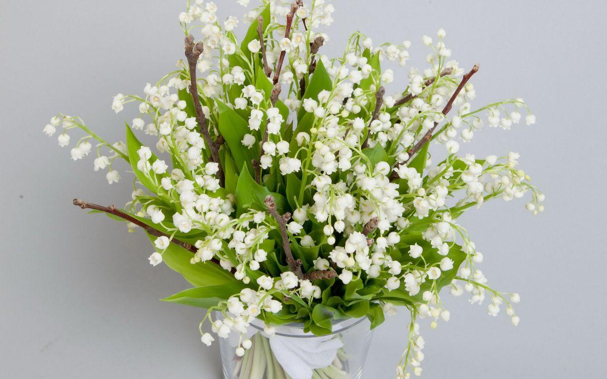 Фото бесплатно ландыши, белые, листья, зеленые, веточки, ваза, цветы