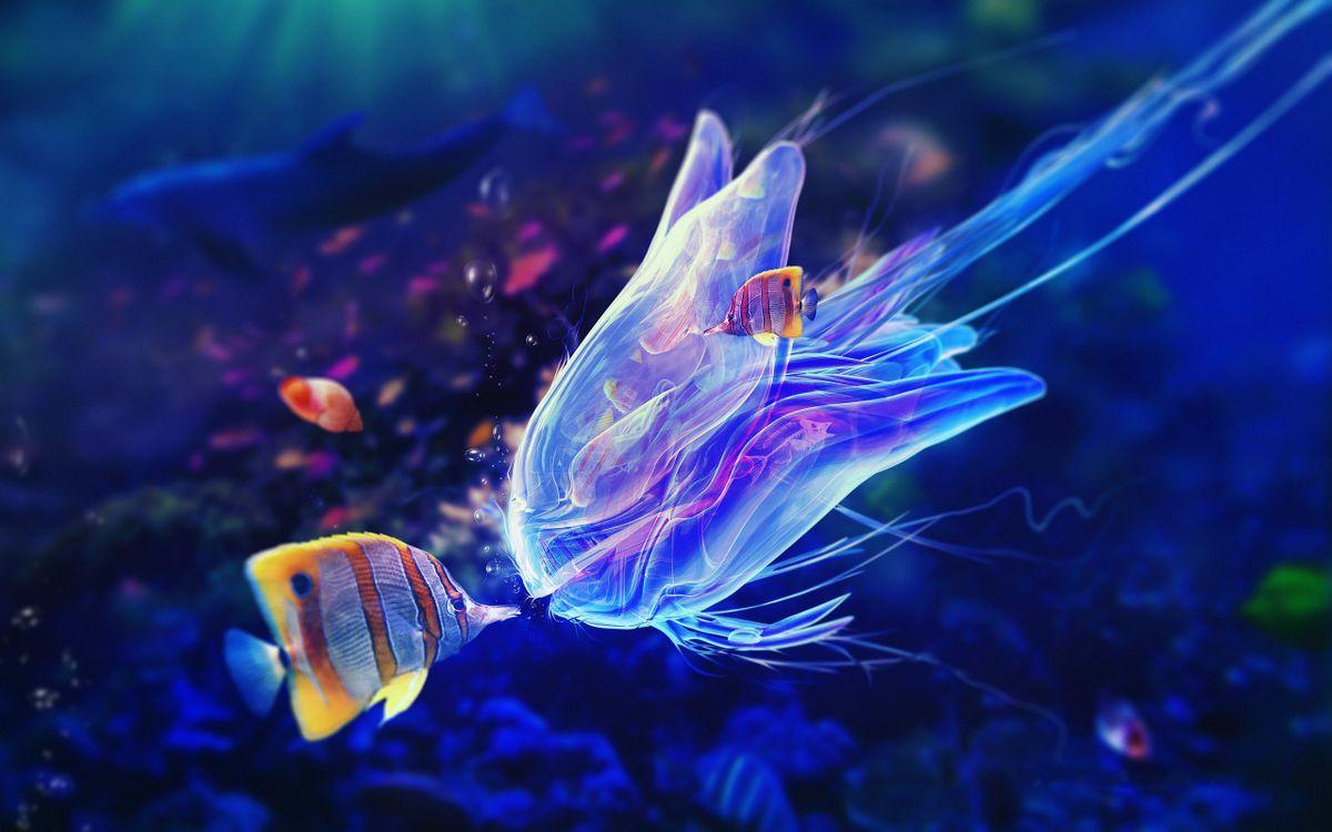 Обои медуза, рыбки полосатые, плавники, риф на телефон | картинки подводный мир