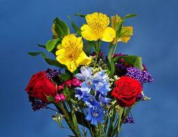 Фото бесплатно розы, лилии, букет