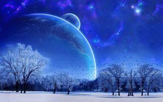 Бесплатные фото зима,снег,деревья,птицы,небо,планеты,звезды
