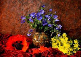 Фото бесплатно цветы, ваза, натюрморт