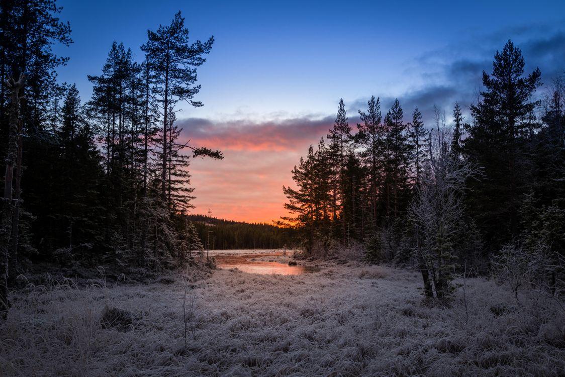 Фото бесплатно Sweden, Mangskog, Arvika - на рабочий стол