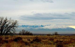 Бесплатные фото осень,трава,деревья,кустарник,горы,вершины,снег