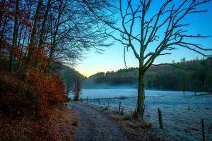 Фото бесплатно осень, закат, поле