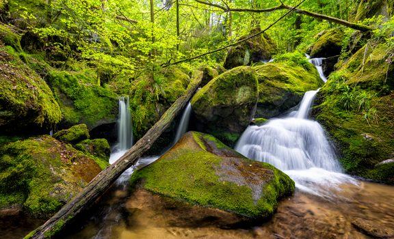 Photo free Gertelbach, Black Forest, Germany