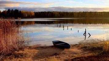 Фото бесплатно берег, растительность, лодка, озеро, сваи, лес, деревья, небо