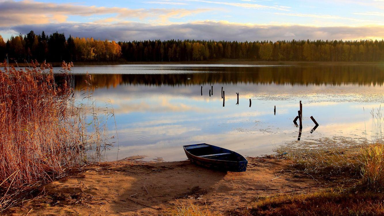 Фото бесплатно берег, растительность, лодка - на рабочий стол
