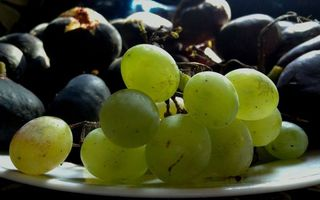 Фото бесплатно гроздь, виноград, зеленое