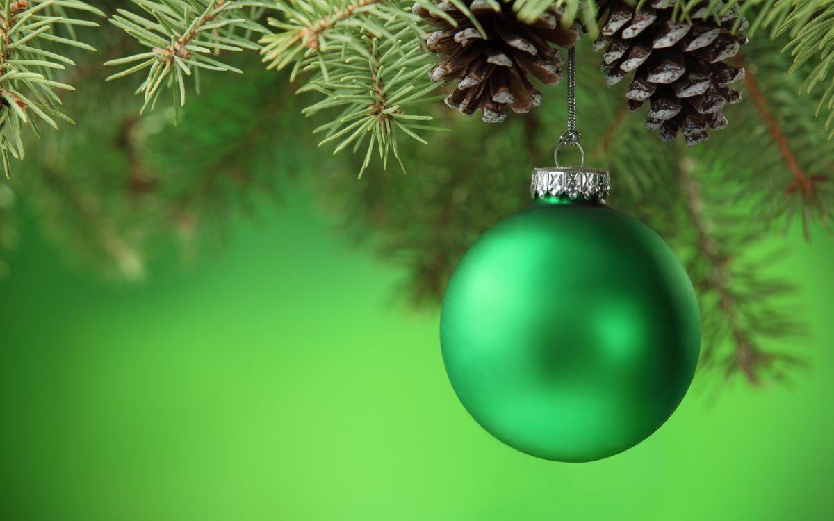 Фото бесплатно Зелёный шар и шишки, еловые ветки, шар - на рабочий стол