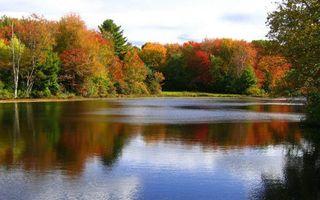 Заставки цвет, осень, небо