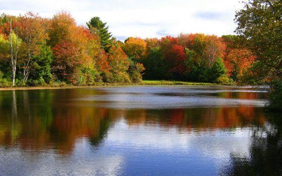 Фото бесплатно осень, река, берег, деревья, листва, цветная, небо