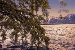 Photo free Geneve lake, Alps, Switzerland