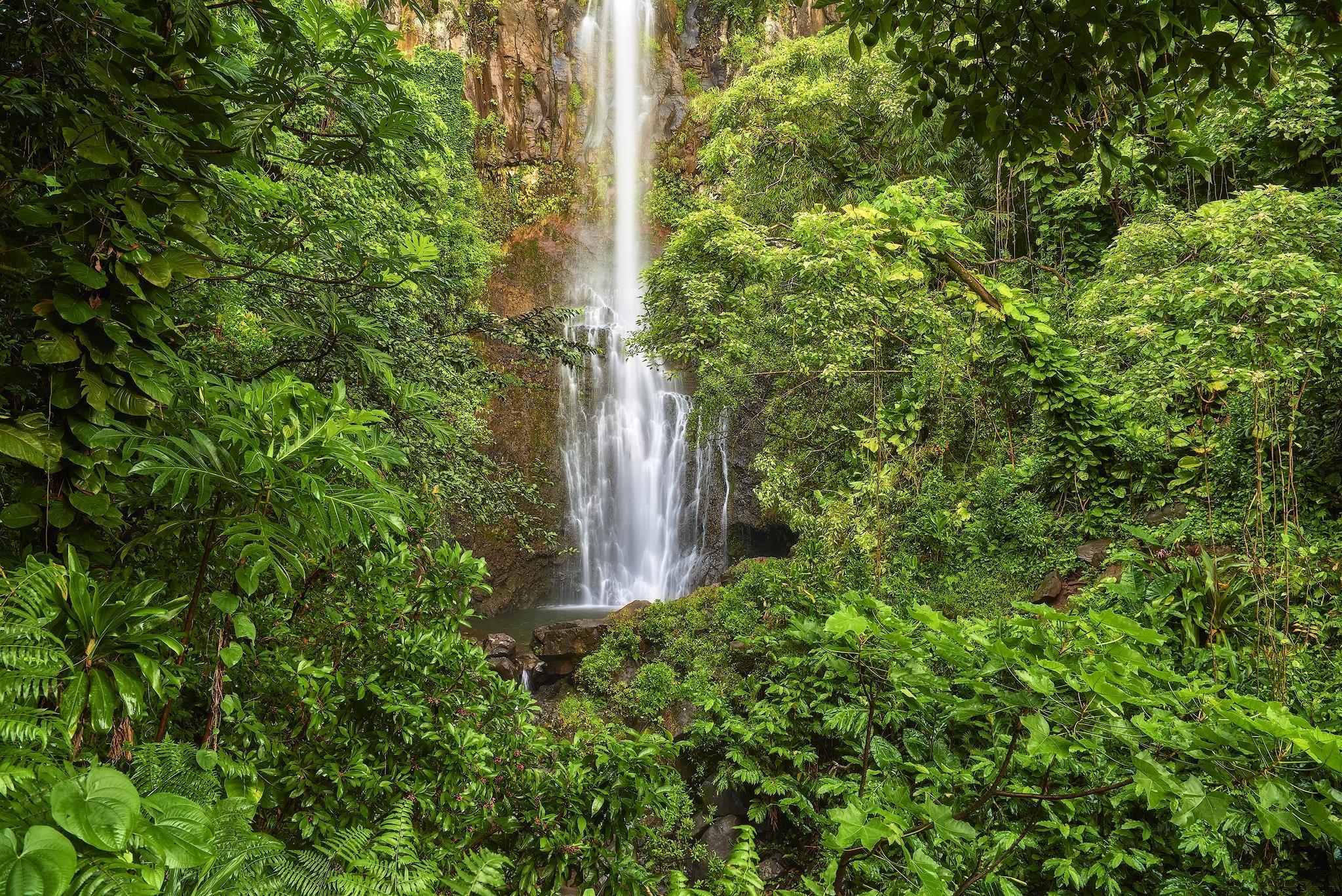 обои водопад, гора, скалы, деревья картинки фото