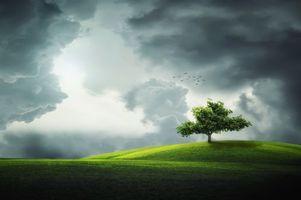Заставки поле,холмы,тучи,пейзаж