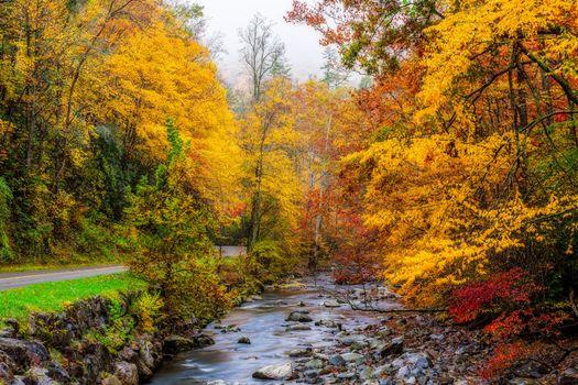 Заставки Грейт-Смоки-Национальный парк, штат Теннесси, осень