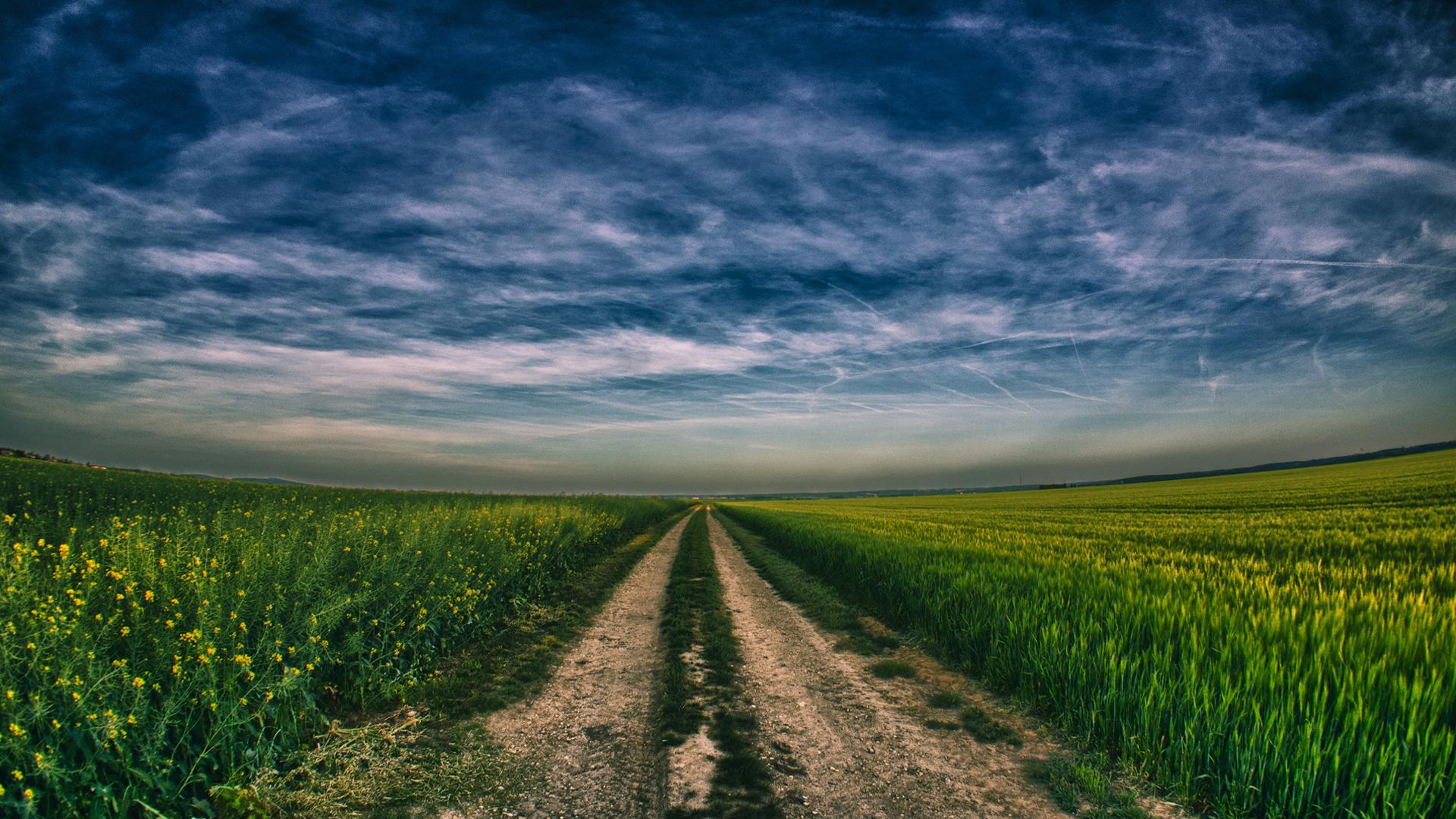 степь дорога небо лето  № 1280909 бесплатно