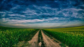 Бесплатные фото дорога,полевая,трава,зеленая,горизонт,небо,облака