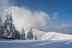 Фото бесплатно горы, деревья, сугробы