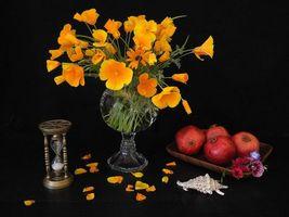 Бесплатные фото цветы,гранат,фрукты,натюрморт