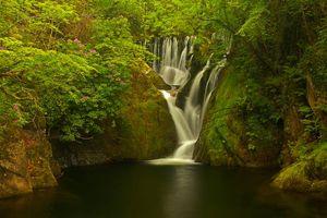 Бесплатные фото Machynlleth,Уэльс,Великобритания,лес,деревья,водоём,водопад