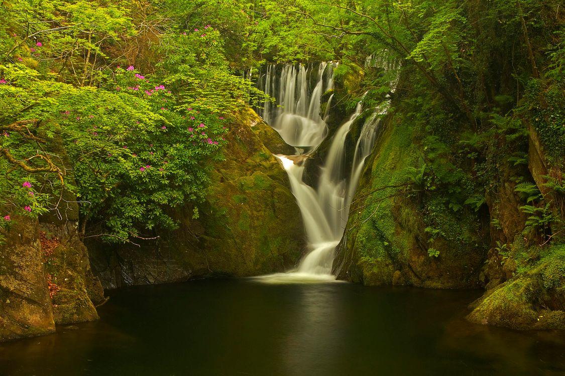 Фото бесплатно Machynlleth, Уэльс, Великобритания, лес, деревья, водоём, водопад, скалы, пейзаж, пейзажи