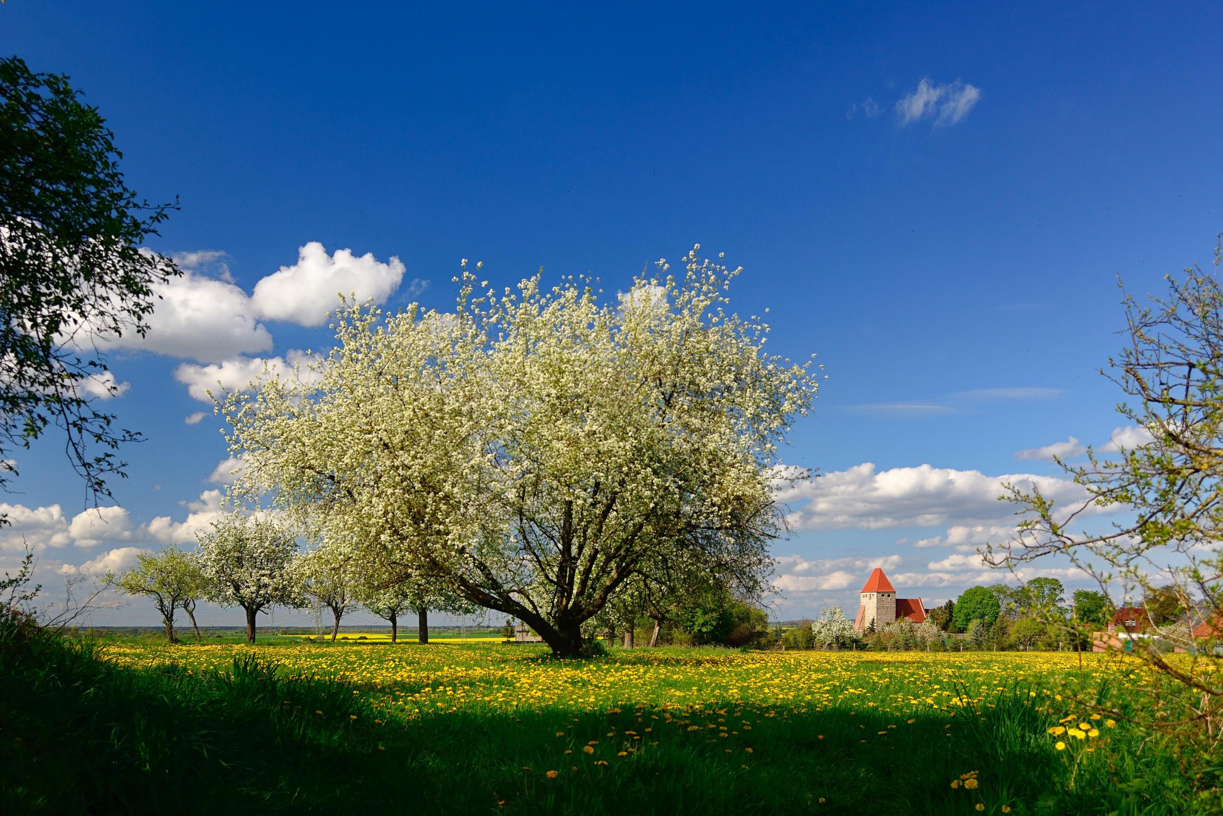 известно, каждом фото цветущая весна весенние пейзажи техника остаются