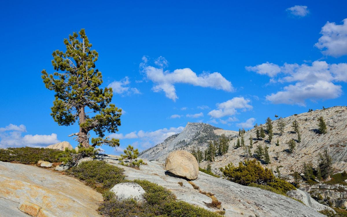 Обои горы, камни, валуны, трава, деревья, небо, облака на телефон | картинки природа