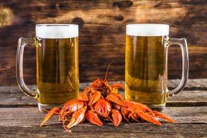 Бесплатные фото кружка,пиво,напиток,продукты