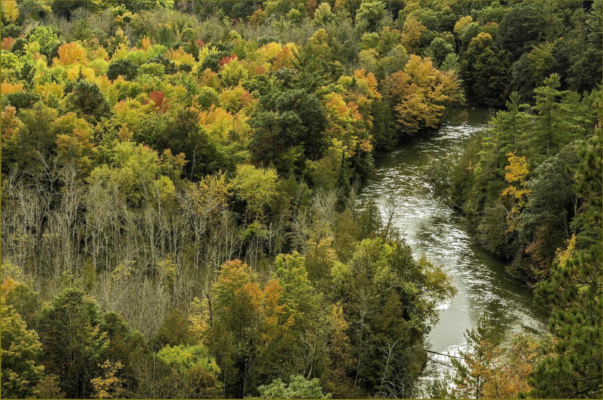 Michigan, Manistee River, осень