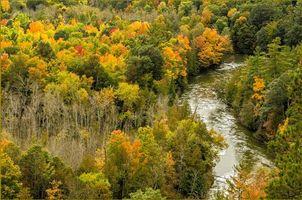 Бесплатные фото Michigan,Manistee River,осень,река,лес,деревья,пейзаж