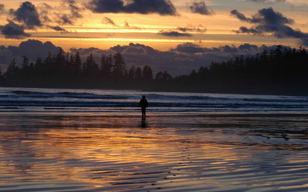 Фото бесплатно река, человек, берег, деревья, небо, закат, облака, пейзажи