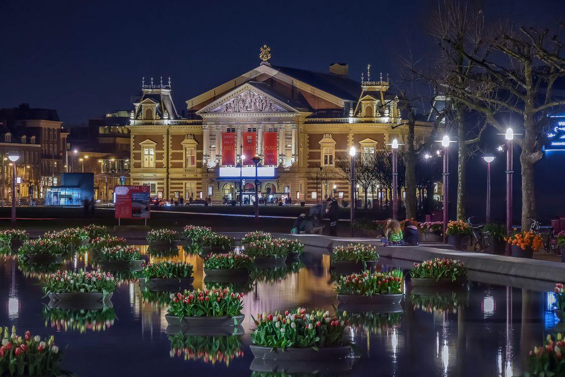 Фото бесплатно Amsterdam, Netherlands, Амстердам, Нидерланды, город, ночь, город