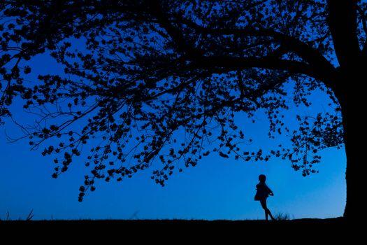Бесплатные фото ночь,силуэты,дерево,девушка