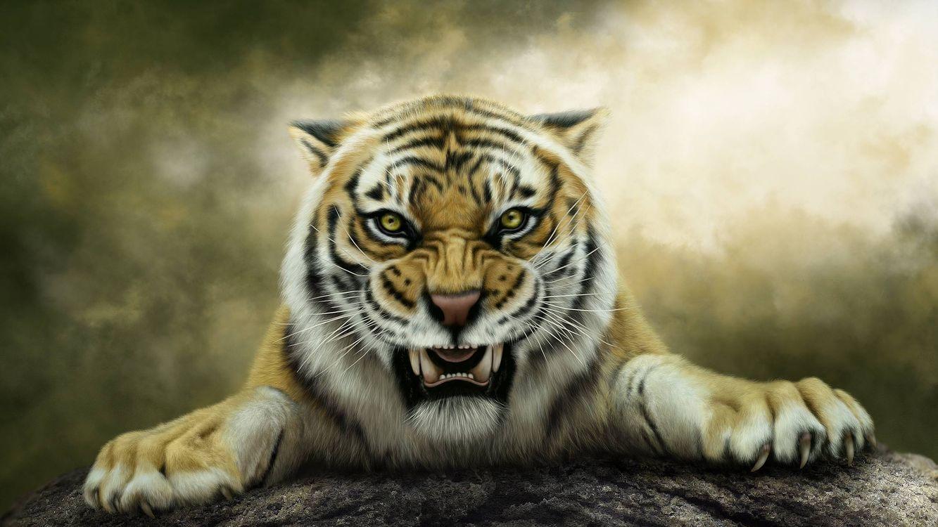 Фото бесплатно art, тигр, оскал - на рабочий стол
