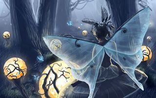 Бесплатные фото девочка,крылья,бант,лес,фонари,бабочки