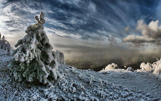 Заставки гора, вершина, мороз