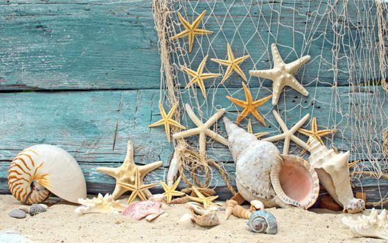 Заставки доски, пляж, песок, сеть, морские звездочки