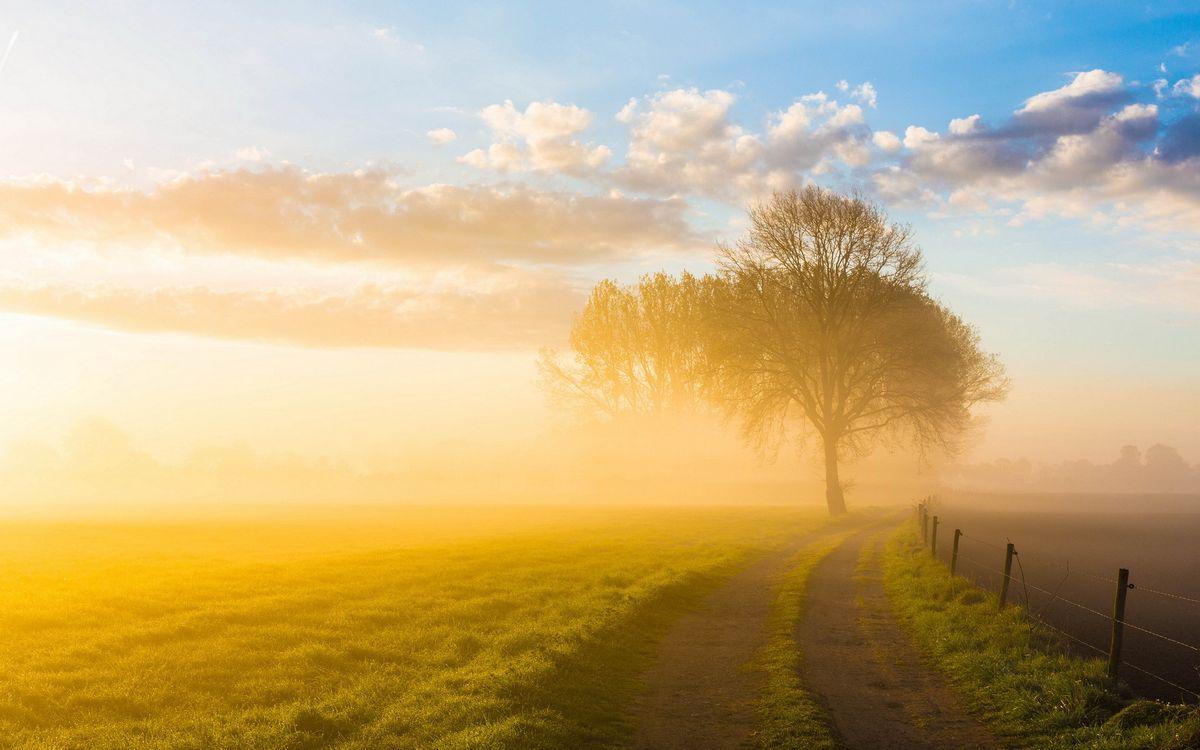 Фото бесплатно поле, трава, дорога - на рабочий стол