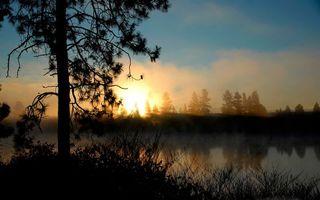 Бесплатные фото вечер,деревья,трава,озеро,дымка,небо,солнце