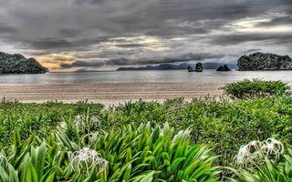 Бесплатные фото берег,растительность,море,острова,скалы,небо,тучи