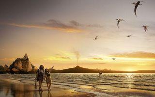 Бесплатные фото побережье,древние люди,пара,море,динозавры,птеродактили