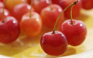 Бесплатные фото ягода,вишня,красная,спелая,хвостики,зеленые