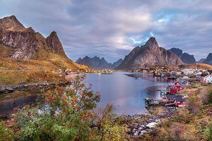 Фото бесплатно Лофотенские острова Норвегии, Lofoten, Norwegen, горы, водоём, деревья, дома, пейзаж