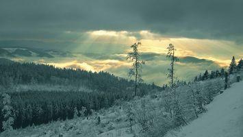 Фото бесплатно зима, горы, трава