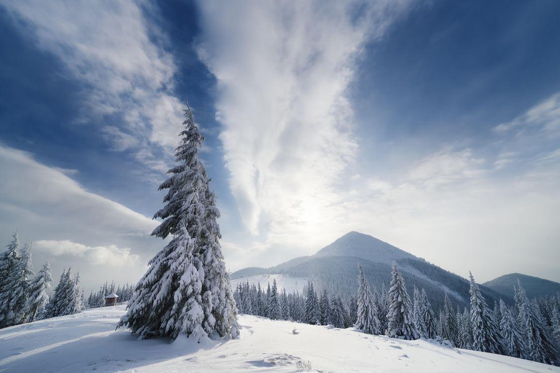 Фото бесплатно зима, снег, сугробы, горы, деревья, пейзаж, пейзажи