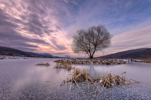 Фото бесплатно озеро, Рышнов, Румыния